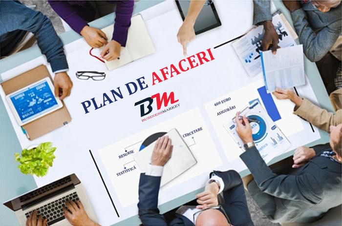 business plan plan de afaceri biznes plan chisinau moldova ieftin
