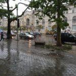 Ploile ţi-au avariat maşina? Află cine suportă daunele!
